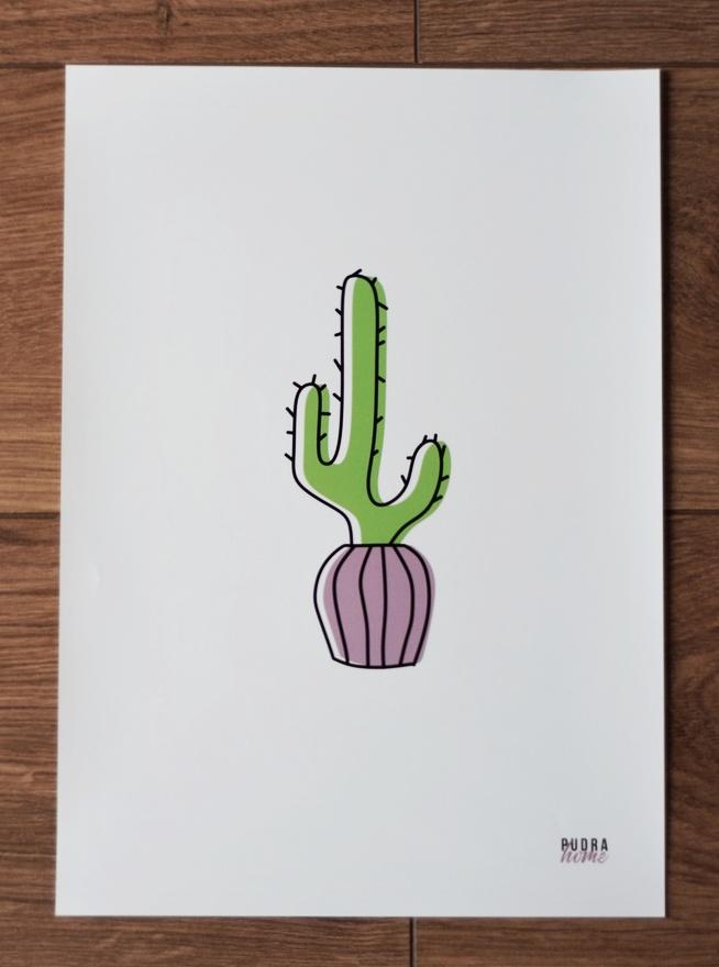 Постер Кактус зеленый (полилит)